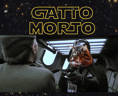 Gatto Morto Darth Vader contro i paperotti - Star Wars cover
